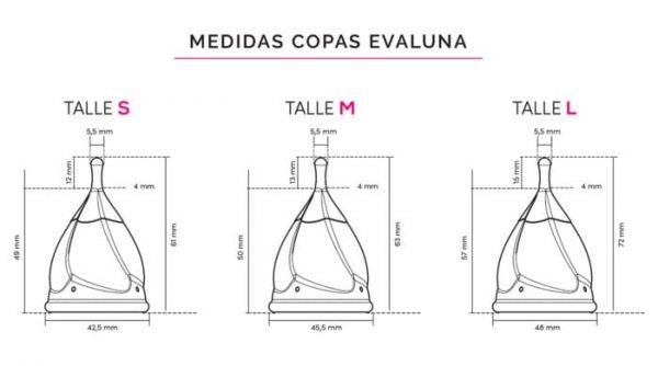 EvaLuna Medidas
